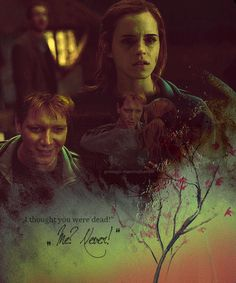 Hermione and Fred. Love it.  I go for the unconventional couples! And the ones that never happen!