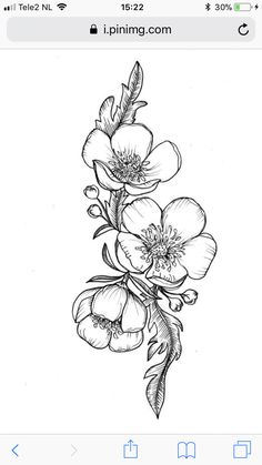 Flower drawing flores y plantas pinterest flower tattoo and draw shoulder daughters name tattoo mightylinksfo