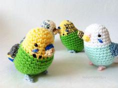 Etsy の Crochet Budgie by IndigoHeartBox