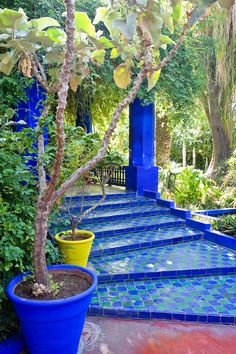 Tiled steps at Jardine Majorelle, Marrakech