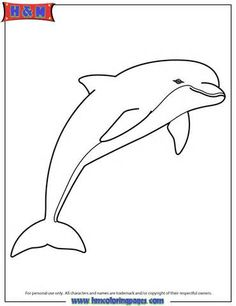 Pink Dolphin Colouring Pages