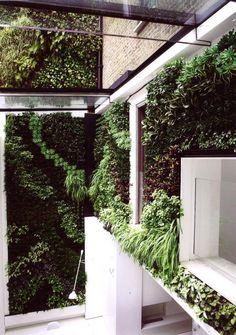 Faulkner Residence | Chris Dyson Architects