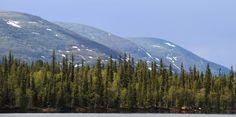 The alpine mountains of Pallas, north Finland