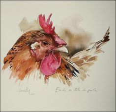 Would be nice for journaling Watercolor Bird, Watercolor Animals, Watercolor Paintings, Rooster Painting, Rooster Art, Chicken Painting, Chicken Art, Loro Animal, Guache