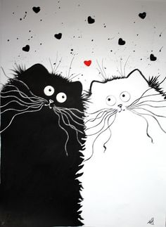 Kim Haskins -Dessins de chats à l'encre.