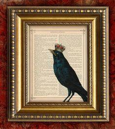 crowned crow