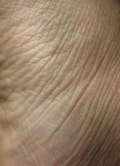Free Texture Tuesday: Skin