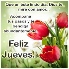 ▷ 100 Imágenes Cristianas Feliz Jueves Spanish Greetings, Pioneer Gifts, Morning Greeting, Happy Thursday, Favorite Quotes, Stuffed Peppers, Emoticon, Bella, Blessings