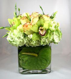 anthurium in vase
