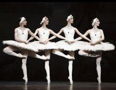 Four little swans