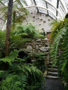 House Remodeling Is Residence Improvement Benmore Botanic Gardens Victorian Fernery. Dunoon, Argyll In The Cowal Peninsula. Victorian Greenhouses, Victorian Gardens, Greenhouse Plans, Buy Greenhouse, Plantation, Glass House, Tropical Garden, Botanical Gardens, Beautiful Gardens