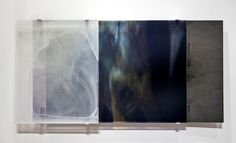 Janet Laurence - Profile, Exhibitions & Artwork | OCULA