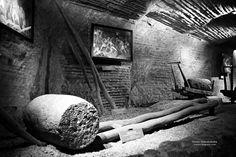 Na solnym szlaku. Muzeum Żup Krakowskich