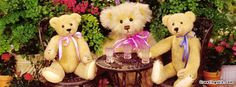 #MyDiscountOffer :♥♥♥ Happy TEDDY BEAR DAY to all my Pinterest fans Love yOU all . ♥♥ Get Teddy Bear Day fb covers♥♥