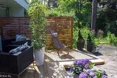 lehtikuusi,patio,terassi,riipparaita,ulkotila