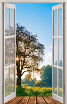 Fotomural /Wall Mural / Decoration Leah Window Mural, Door Murals, Window View, Mural Art, Wall Art, Through The Window, Amazing Nature, Landscape Art, Beautiful Landscapes