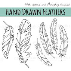 Feather Clip Art, Feather Drawing, Feather Stencil, Feather Pattern, Tattoo Plume, Draw Tutorial, 3d Templates, Photoshop Brushes, Pyrography