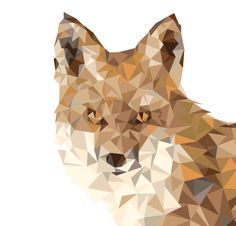 Finally finished my tedious side project! Geometric fox made constructed out of triangles. Whitney Anderson, Geometric Fox, Low Poly, Triangles, Wolf, Objects, Illustration, Artwork, Pattern