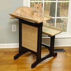 6 Dos and Donts When Buying Used Cat Furniture