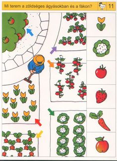 * Visuele discriminatie Preschool Garden, Preschool Math, Kindergarten, Home Activities, Brain Activities, Visual Perception Activities, Picture Comprehension, Sudoku, Sequencing Cards