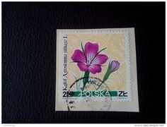 RARE 1967 2 50 ZL POLSKA FLOWER-KAKOL AGROSTEMMA GITHAGO RECOMMENDET LETTRE ON PAPER COVER USED SEAL - 1944-.... Republic