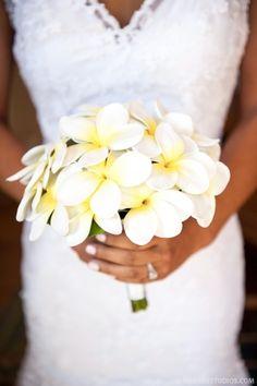 Bridesmaids all classic white plumeria bouquet
