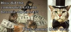 Capitalist Kitties