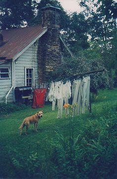 Old Farm House with laundry on the clothes line. Reminds me of my grandma's yard when she lived down the road.