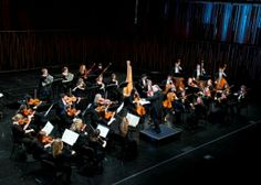BYU Chamber Orchestra Orchestra, Concert, Concerts, Band
