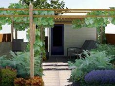 Kleine tuin met pergola