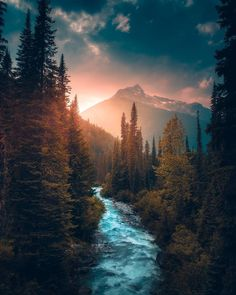 Ideas for beautiful tree photography scenery god Beautiful World, Beautiful Places, Beautiful Pictures, Amazing Places, Natur Wallpaper, Nature Aesthetic, Landscape Photos, Nature Pictures, Amazing Nature