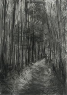 'Silpho Forest III', Janine Baldwin, graphite and charcoal on paper, Forest Sketch, Forest Drawing, Amazing Drawings, Easy Drawings, Pencil Drawings, Landscape Drawings, Cool Landscapes, Charcoal Art, Charcoal Drawings