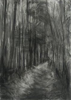 'Silpho Forest III', Janine Baldwin, graphite and charcoal on paper, 67 x 48cm  www.janinebaldwin.com