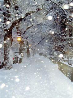 Christmas Scenery, Winter Scenery, Winter Christmas, Winter Snow, Prim Christmas, Christmas Phone Wallpaper, Winter Wallpaper, Winter Images, Winter Pictures