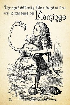 'Alice tries to play croquet with a flamingo as mallet' Illustration to the eighth chapter of Alice in Wonderland by Sir John Tenniel, 1865 Alice In Wonderland Clipart, Alice In Wonderland Drawings, Alice And Wonderland Quotes, Alice In Wonderland Party, Adventures In Wonderland, Alice In Wonderland Flamingo, Mad Hatter Zitate, Mad Hatter Quotes, John Tenniel