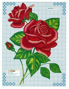 Red roses chart