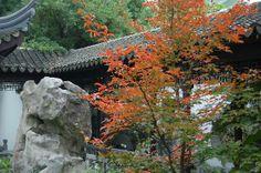 Lan Su Chinese Garden Portland   Portland Photo: Autumn scene