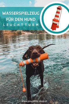 Wasserspielzeug für Hunde | Badeurlaub mit Hund | Schwimmen mit Hund | Pawsome Sports, Dog Accessories, Lighthouse, Swimming, Sustainability, Linen Fabric, Hs Sports, Sport