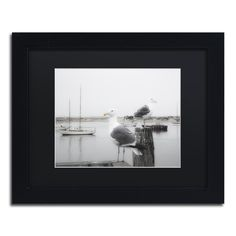 Two Seagulls & Boats by Moises Levy Framed Photographic Print in Black