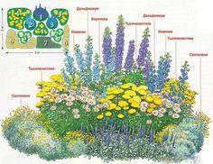 Устройство цветников – варианты клумбы из многолетников на даче