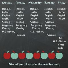 Mountain of Grace Homeschooling: Back to Homeschool Blog Hop~ Day 3~ Our Curriculum