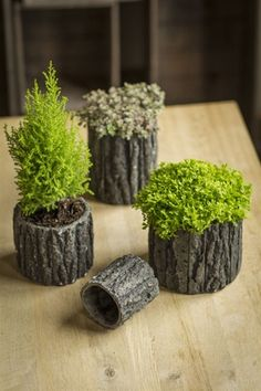 Round Shaped Ceramic Pots with Bark-Like Detailing by Vagabond Vintage