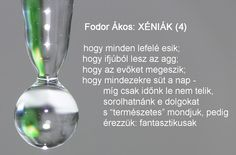 Fodor Ákos: Fodor Ákos: XÉNIÁK (4) Haiku, Poems, Feelings, Quotes, Life, Quotation, Quotations, Poetry, Verses
