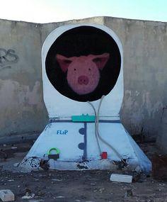 Space Pig...