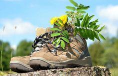 Schöne Almen: Das Wandern ist des Kärntners Lust > Kleine Zeitung Visit Austria, Central Europe, Homeland, Alps, Hiking Boots, Vacation, Beautiful, Funny Things, Travel