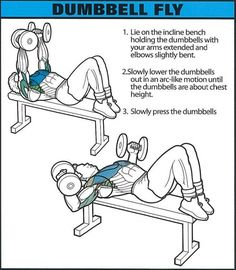 Dumbbell Fly - Healthy Fitness Chest Training Exercises Tricep - Yeah We Train !