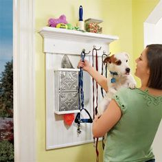 DIY: Build a Wall-Mounted Pet Organizer. I have a Martha Stewart pet hook but I can put that onto this!!! Clever!!!