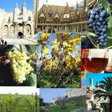 Goods from Mediterranean basin- wine