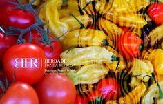 #CenterPortugal #Healthyfood #Cooking #HFRresort #Travel #Luxury #Abrantes #VilaDeRei #Sertã #Golegã #Portugal #Spa #Ferias #Luxurytravel #Nature #Hiking #Wanderlust
