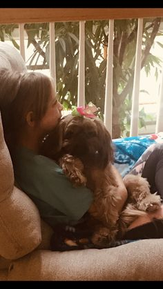 Quality ShihTzu for quality homes for Pets and Therapy dogs. We offer LIFETIME advice for your Glory Ridge ShihTzu. Imperial shihtzu to standard size shihtzu in every color. Therapy Dogs, Shih Tzu, Missouri, Puppies, Pets, Fall, Animals, Autumn, Cubs